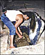 Dalit digs out raw sewage by hand