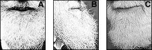 A. George Bernard Shaw, B. Charles Darwin, C. Buster (Uncle Albert) Merryfield