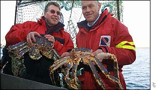 Fishermen hold young King crabs