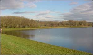 Lisvane reservoir