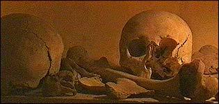 Armenians' skulls