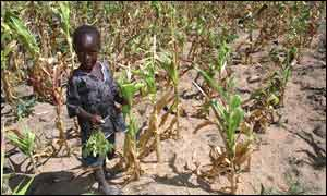 Malnourished child in Zimbabwe