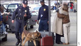 Sniffer dogs at Washington National Airport, United States.