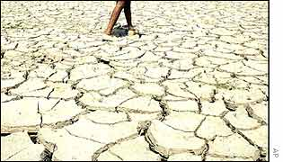 Drought stricken farm land