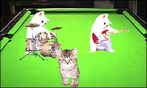 Animated kittens playing instruments