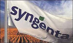 Syngenta flag