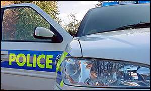 Police car - generic