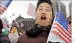 South Korean demonstrator