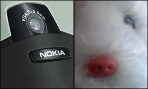 Camera-phone montage, BBC