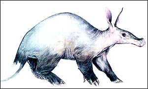 Aardvark (Proceedings of the National Academy of Sciences)