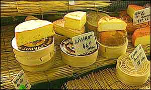 Collection of cheeses