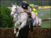 Desert Orchid always gave his all