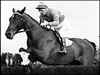 Golden Miller won five Gold Cups in a row