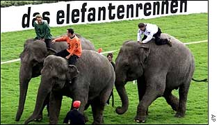 Elephant race in Germany