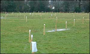 Field marked out into plots at Potters Bar. Used by permission of Andy Lord, campaigner
