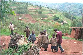 Rwandan coffee growers