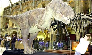 T. rex robotic model at London's Natural History Museum (PA)