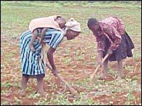 Poor farmers