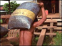 A man carrying a sack of nuts