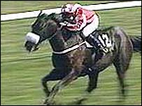 Davids Lad won the Irish Grand National in 2001