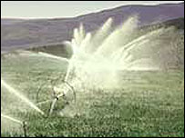 Irrigation spray   USDA