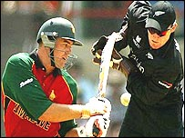 Heath Streak and Brendan McCullum