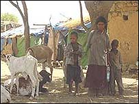 Badme village on the Ethiopia/Eritrea border