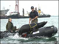 US Navy sea lions training