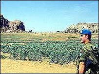 UN peacekeeper looking across border