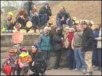Tree Protestors