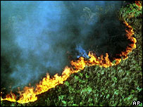 Fire from land-burning by farmers north of Rio in 1999