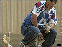 Iraqi citizen sits astride Saddam statue