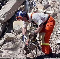 Swedish rescuer with sniffer dog near Boumerdes