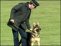 Police dog handler and dog