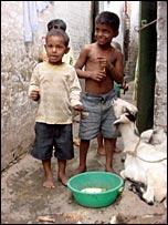 Bihari boys in Geneva camp