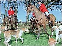 A fox hunt