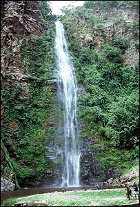 West Africa's highest waterfall at Wli