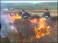 Gorse fire