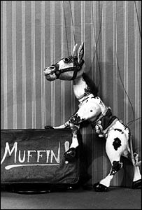 Muffin the Mule