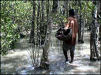 honey hunter walks through jungle