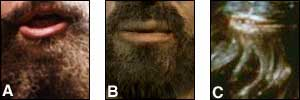 A. Brian Blessed, B. BBC recreation of what Jesus might have looked like, C. Star Wars' Chewbacca