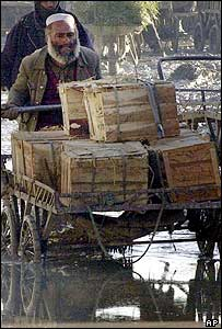 An Afghan shopkeeper negotiates a puddle with his cart loaded with vegetables in the Kabul vegetable market, 20 April 2003