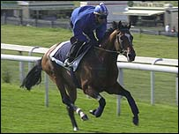 Mr Combustible warms up before the 2001 Epsom Derby