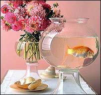 Martha Stewart fishbowl