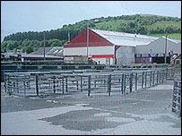 Aberystwyth Livestock Market