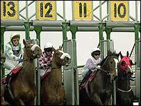 Turf racing stalls