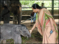 Vet Samanthi Mendis with a baby elephant