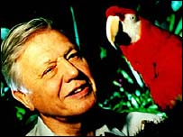 David Attenborough with a scarlet macaw in The Life Of Birds