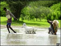 Villagers with their goats walk through the flood waters in Dadaab, northern Kenya, 7 May 2003