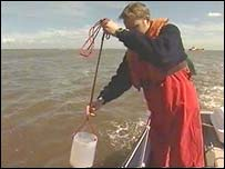 Cleanliness test on the river Mersey